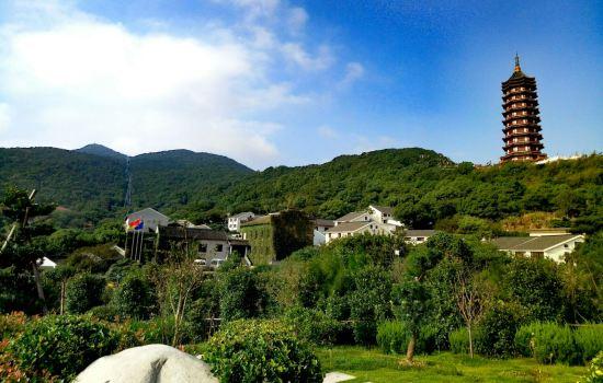 舟 山普陀山风景区 旅游咨询电话,图片尺寸:659×414,来自网页:http