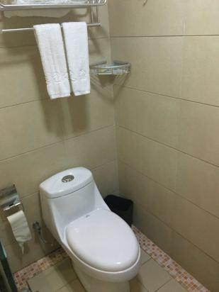 马桶和淋浴在一起,不太方便.水量一般般,不够大.