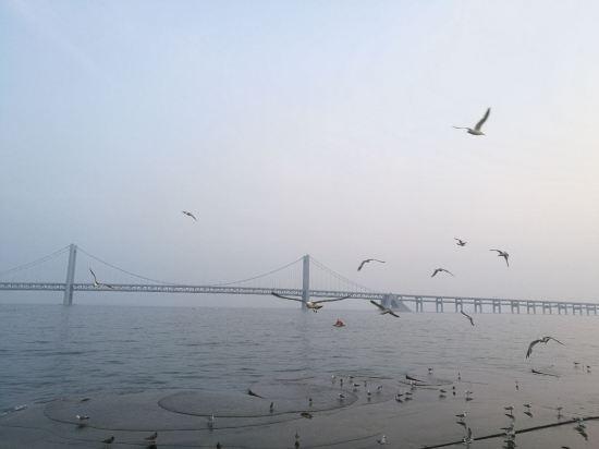 旁边还有游乐场,可以喂食海鸥,星海湾大桥很震撼!