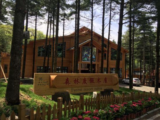 白云山森林木屋度假酒店