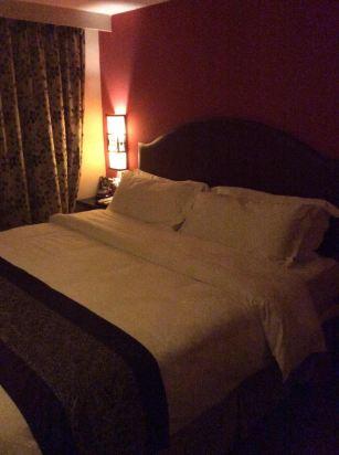 背景墙 房间 家居 酒店 设计 卧室 卧室装修 现代 装修 307_412 竖版