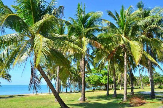 三亚椰林海岸度假公寓