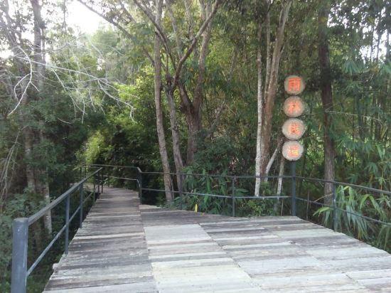 度假村 乐东/乐东雨林谷国际养生度假村