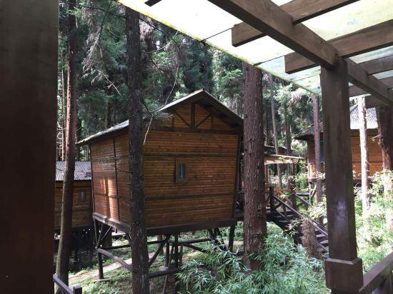 咸丰坪坝营森林树上宾馆预订价格,联系电话 位置地址