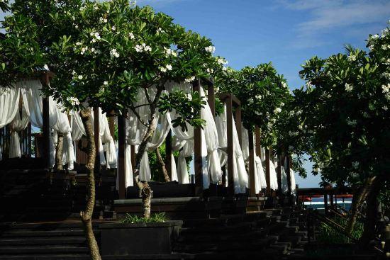 (巴厘岛圣瑞吉