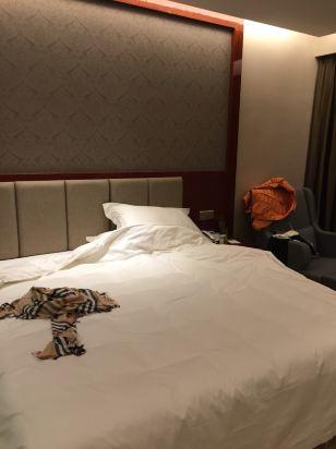 背景墙 房间 家居 酒店 设计 卧室 卧室装修 现代 装修 308_412 竖版