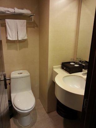 马桶 设计 卫生间