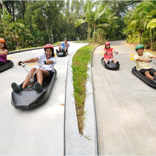 EXCLUSIVE PRIORITY | Skyline Luge Sentosa Ticket