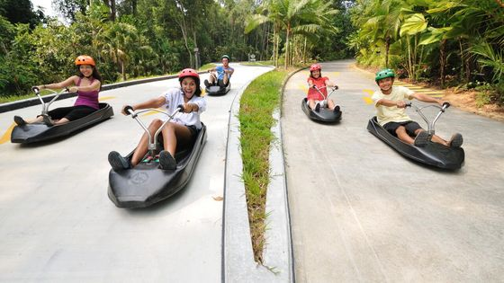 Skyline Luge Sentosa Ticket