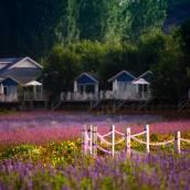 北京薰衣草莊園花田度假木屋